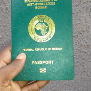 17 Countries Outside Africa Nigerians Can Visit Without Visa